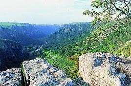 Oribi Gorge Kzn Wildlife National Park Reserve Self