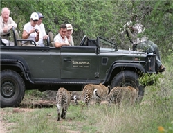 Savanna Tented Safari Lodge Game Drive