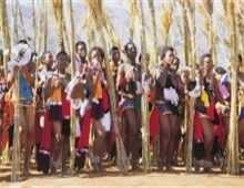 Swazi Reed Dance