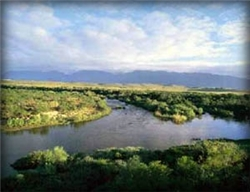 Scenery from the Bontebok National Park