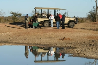 Game Drive at Honeyguide Tented Safari Camp - Khoka Moya