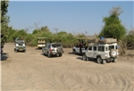 Chobe National Park-Game drives