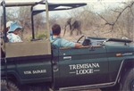 6 Day Safari – Tremisana Lodge
