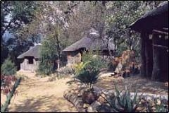 Umlani Bush Camp